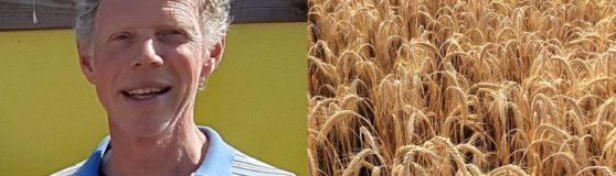 Interview mit Wouter Klijn – Strohbau-Verband Niederlande